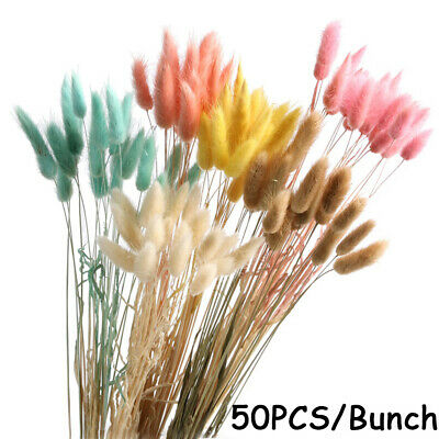 Shooting Props Real Flower Plant Stems Natural Material Dried Flowers Bouquets