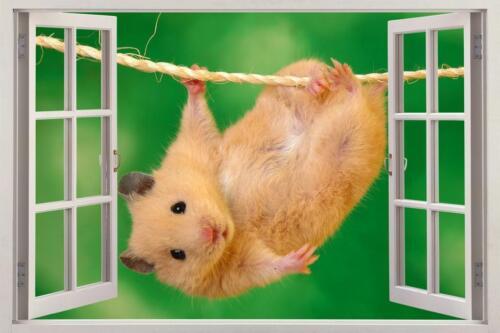 Cute Hamster 3D Window Decal Wall Sticker Home Decor Art Mural Animals J702