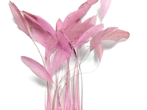 1 Dozen LIGHT PINK Stripped Rooster Coque Tail Feathers Craft Party Supplier