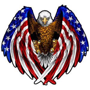 BALD EAGLE AMERICAN FLAG DECAL STICKER 3M USA MADE TRUCK VEHICLE WINDOW WALL CAR