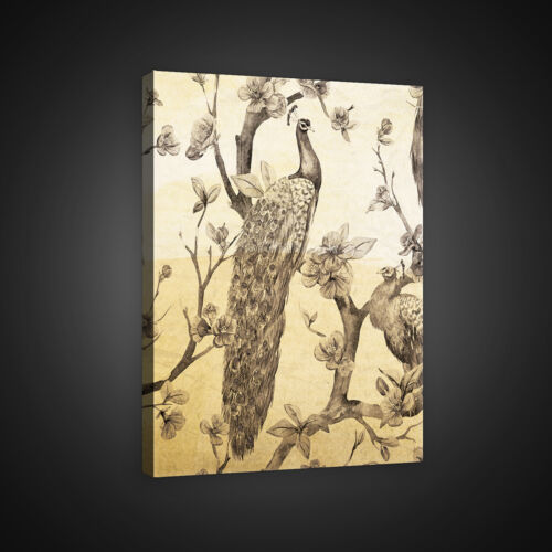 Canvas Wall Art Canvas Picture Poster Bird Peacock Flower Tree Art Photo 3fx2593o6