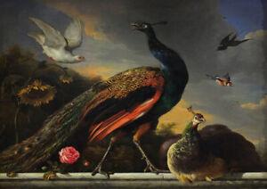 Birds Melchior d/'Hondecoeter Fine Art Print//Poster