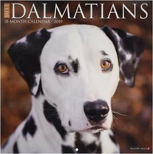 Just Dalmatians 2019 Wall Calendar (Dog Breed Calendar)