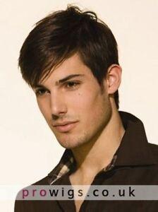100% Real Hair ! Human Hair Beautiful Fashion Short Brown Straight Wig For Men