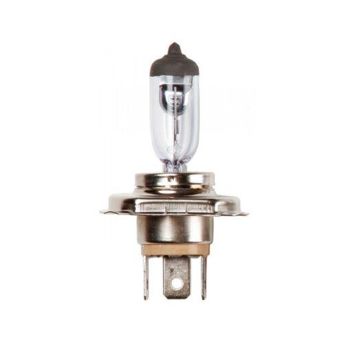 Carlex 12V 60/55W H4 P43t Headlamp Halogen - CO472