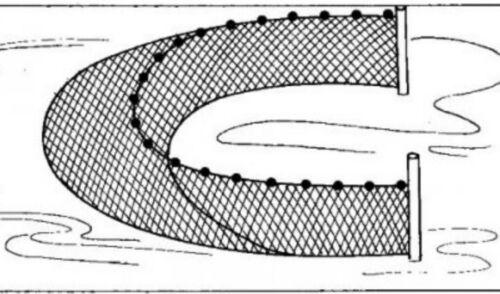Knotenlos-Zugnetz-Schleppnetz-Fischnetz 10m x 1,50m MW 10mm # Karpfen Koi*