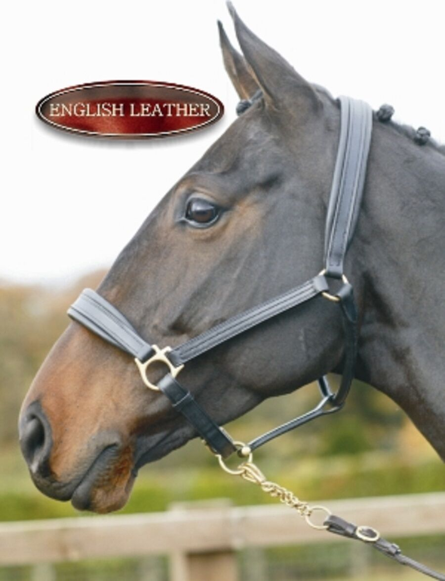 Treadstone Quality English Leather headcollar lined & padded nose & poll
