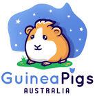 guineapigsaustralia