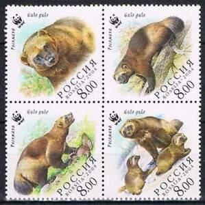 WWF-Rusland-postfris-2004-MNH-1198-1201-Beer-Bear-246