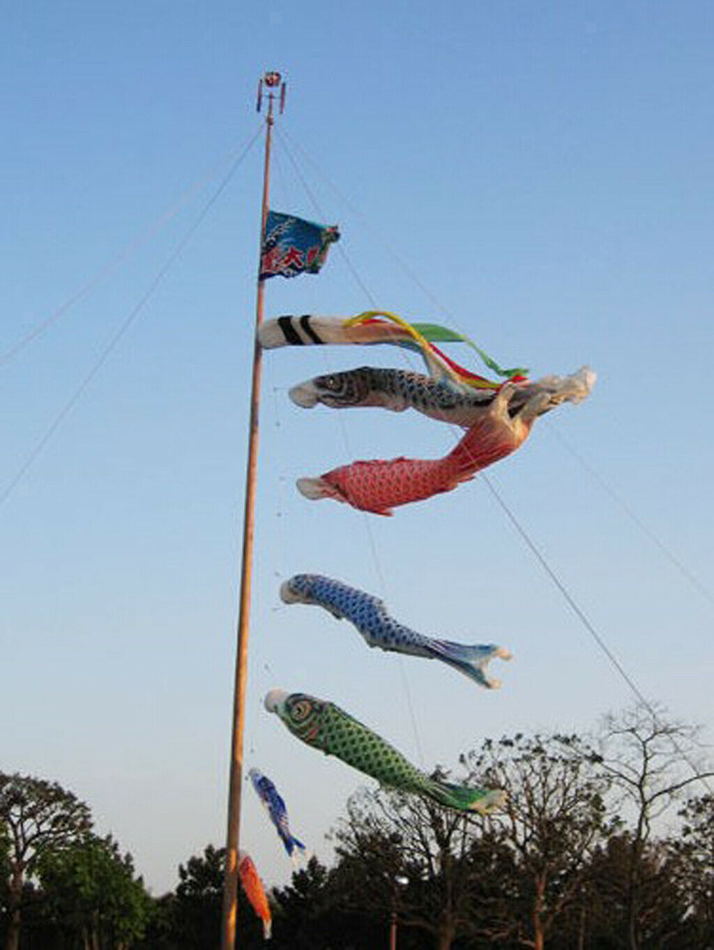 5pcs Japanese Koinobori Koi Nobori Carp Windsocks Streamers Fish Flag Decor