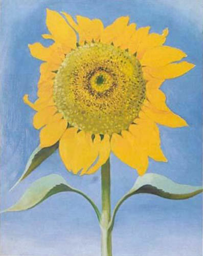 FLORAL ART PRINT - Sunflower, New Mexico, 1935 by Georgia O'Keeffe 16x20 Poster