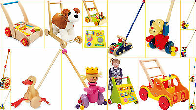 Baby Walker Training Toy Blocks Push Along Kids Babies Learn to Walk Big Variety