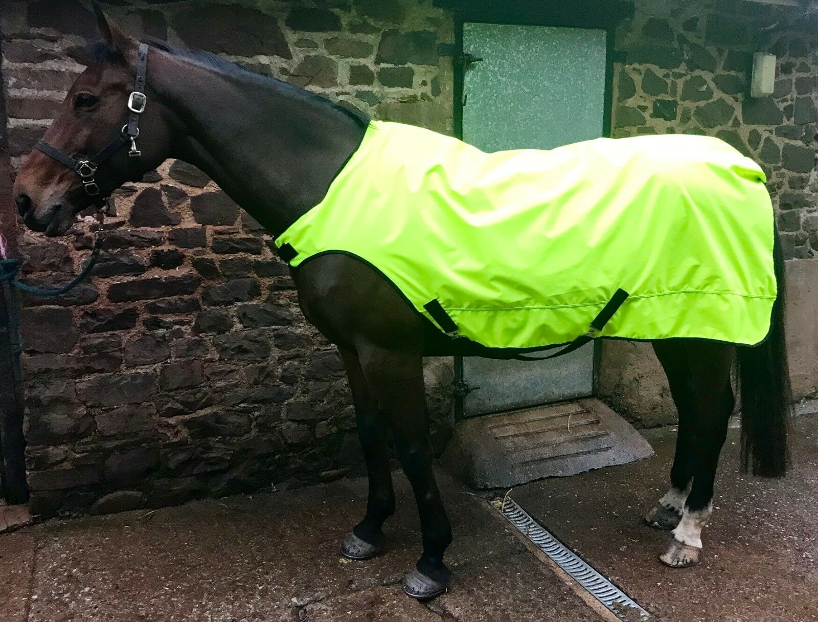 Walker Lunge Lead Out Rug Fleece Light Or Heavy Weight Hi Viz Or Plain Colours
