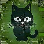 brise_cat1