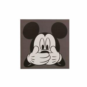 Details Zu Disney Wandbild Keilrahmen Bild Leinwand Micky Maus Kinder 35x35cm