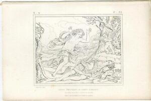 ANTIQUE-GREEK-MYTHOLOGY-VENUS-ARTISTIC-NUDE-WOMAN-ADONIS-CHERUB-WILD-BOAR-PRINT