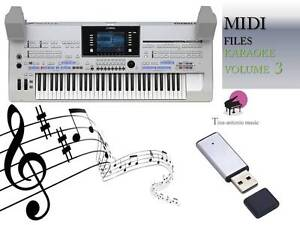 Details zu MIDI File Karaoke USB stick for Tyros 4 Volume 3 NEW