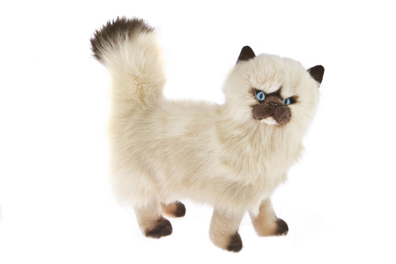 NEW STANDING HIMALAYAN TOY CAT KITTEN SOFT STUFFED PET PLUSH TOY HIMALAYAN 14inch 36cm a824ef