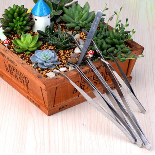 Set of 5Pcs Stainless Tweezers Anti Static Bonsai Gardening Tool Kit Silver