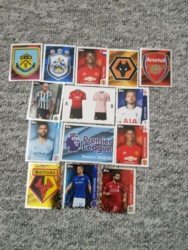 Premier League Pegatinas 2019-Completa Tu Colección