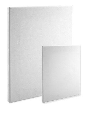 "16X20 Box of 20 Bulk Discount 5//8/"" Econo White Economy Stretched Canvas Panels"