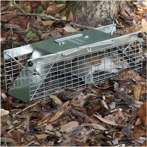 Havahart 1025 Live Animal Two Door Squirrel Chipmunk Rat