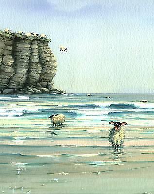 "Mark Denman greeting card /"" Sheep dip /"" signed print of sheep in swimming pool"