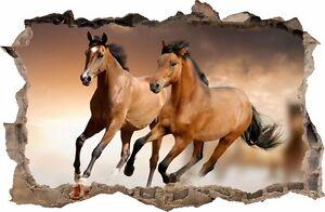 Wandtatoos Pferde wandaufkleber loch in der wand 3d pferd pferde wandtattoo 68 ebay