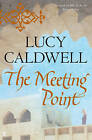 The Meeting Point by Lucy Caldwell (Paperback, 2011)