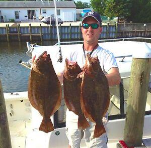 BEST-FLUKE-FLOUNDER-B2-SQUID-FISHING-RIGS-LURES-GAMAKATSU-SEA-BASS-COD-SALMON