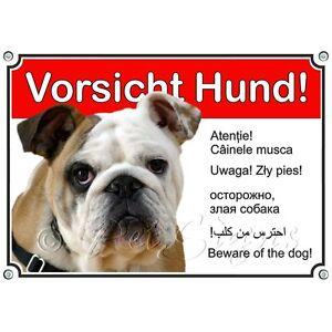 Bouclier De Chien Avec Bulldog Anglais En 6 Langues - Panneau En Métal
