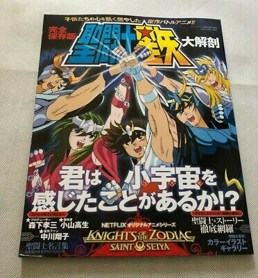Saint Seiya DAIKAIBOU Japanese masterpiece archive series  book 2020//6//18