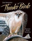 Thunder Birds: Nature's Flying Predators by Jim Arnosky (Hardback, 2011)