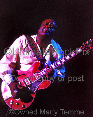 FREDDIE KING PHOTO 8x10 Concert Photo in 1973 by Marty Temme 1A Gibson 345 Blues