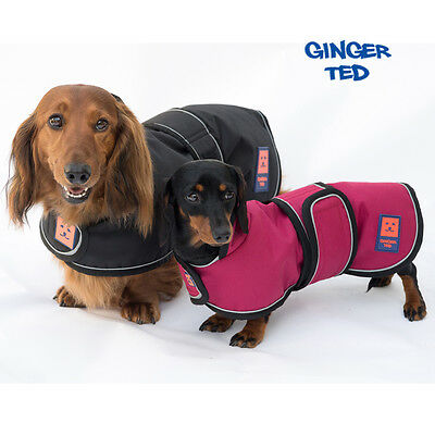 Warm Dachshund Fleece Coats That Actually Fit