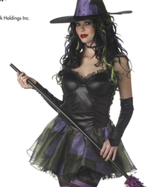 Sexy Rebel Toons Wicked Witch of the West Adult Womens Halloween Costume MED  sc 1 st  eBay & Rebel Toons Wicked Witch of The West Adult Womens Halloween Costume ...