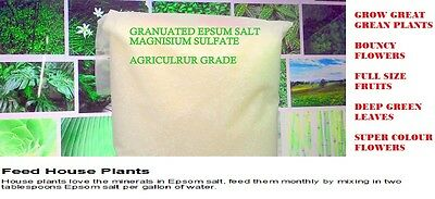 MAGNESIUM SULPHATE NVR EPSOM SALT-100% water soluble fertilizer for Greens 400gm