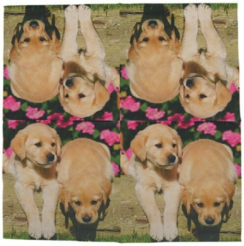 Napkins Puppies Dogs Babies 20 piece of tissue paper 33x33 cm