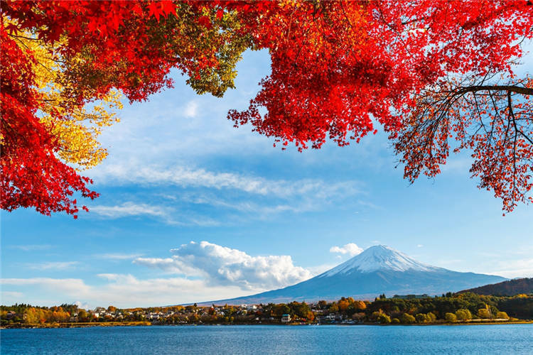 Mount Fuji Red Leaves Removable Full Wall Mural Photo Wallpaper Print Home 3D De