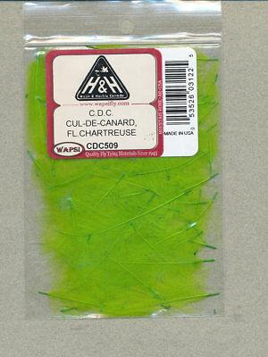 fl chartreuse     CDC509 Cul-de-Canard CDC