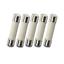 T0.63 250V T0.63A250V cartridge CERAMIC fuse 6X30mm 5x T0.63A 250V 0.63A 250V