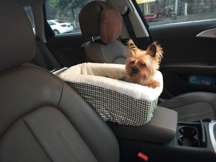 Dog Safety Trixie Car Net