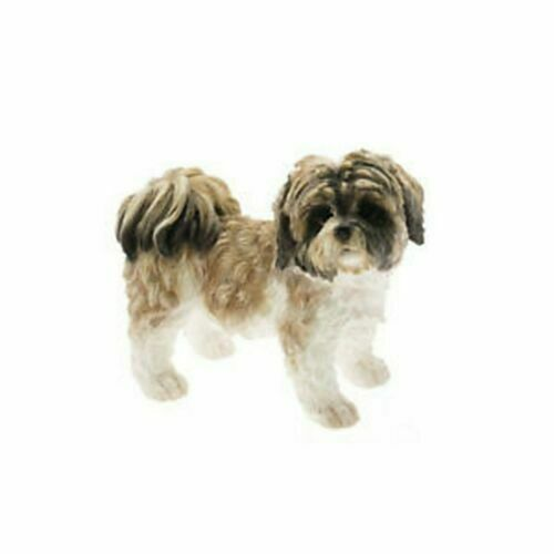 Shih Tzu brown white dog dogs 10cm high Leonardo collection by LP11610