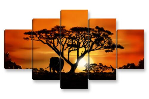 AFRICAN SUNSET 5 cm 150x90 arredamento stampa su tela Quadro Moderno 5 pz