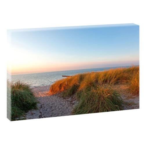 Weg durch die Dünen Bild XXL Edel Nordsee Leinwand Poster XXL 120 cm*80 cm 640a