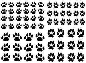 Dog-Cat-Paw-Print-Select-Black-or-White-5-034-X-7-034-Card-Fused-Glass-Decals