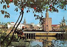 BT17665 Sevilla rio guadalquivir torre del oro y giralda   spain
