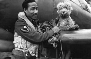 WW2 Picture Photo Spitfire flight Sargeant with squadron mascot dog 1944 0658