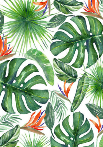 Tropical Palm Leaves Wall Art Large A3 Size Quality Canvas Print Ebay You can find more tropical leaves clip arts in our search box. details about tropical palm leaves wall art large a3 size quality canvas print