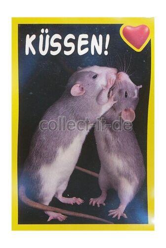 Panini-Amici cucciolotti misión animal amigos sticker nº 43